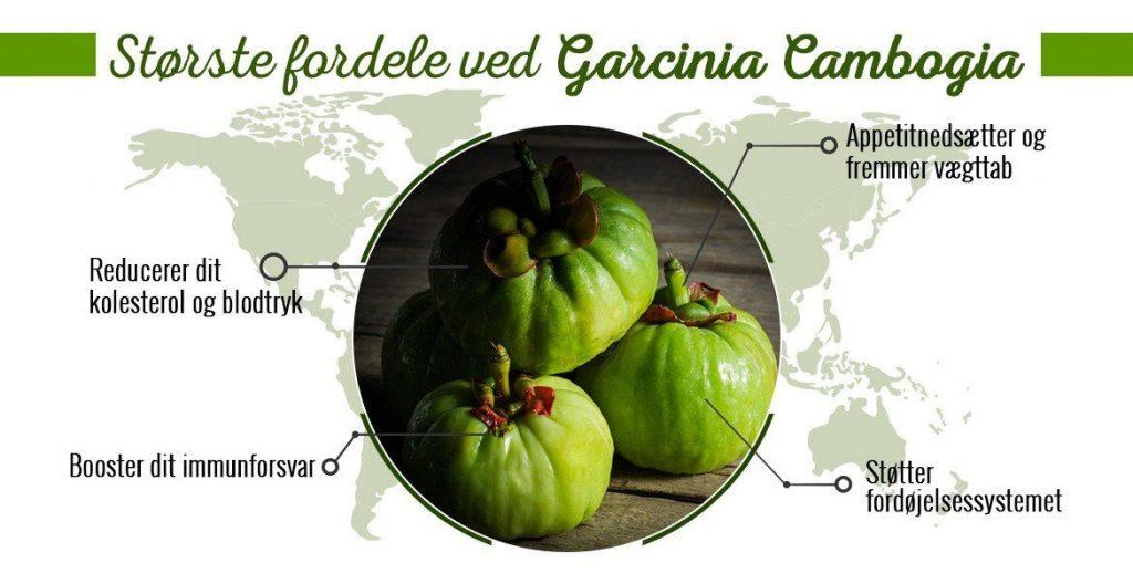garcinia combogia fordele -> køb her -> tab dig :)